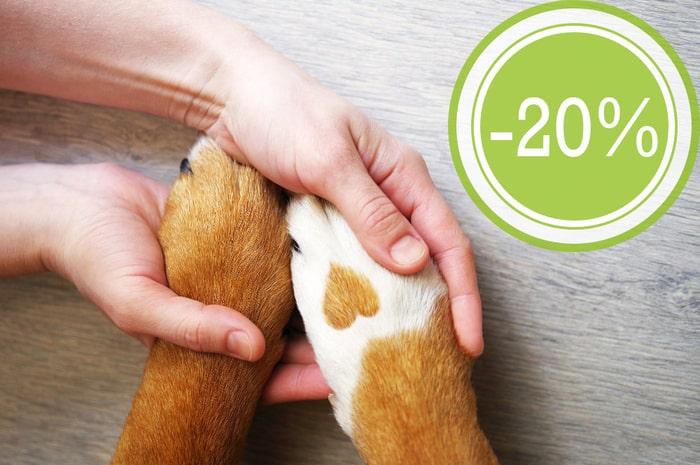 farmacie veterinarie parma